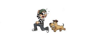 ladro e cane