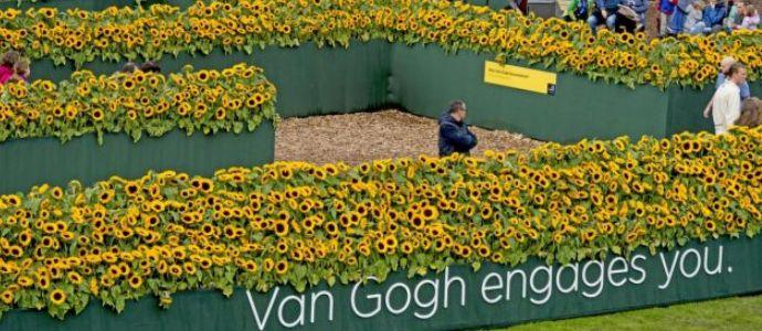 Matrimonio Girasoli Van Gogh : La finestra david garrett a milano tradurre harry potter