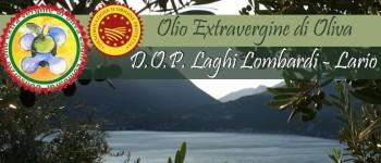 olio-dop-laghi-lombardi-lario