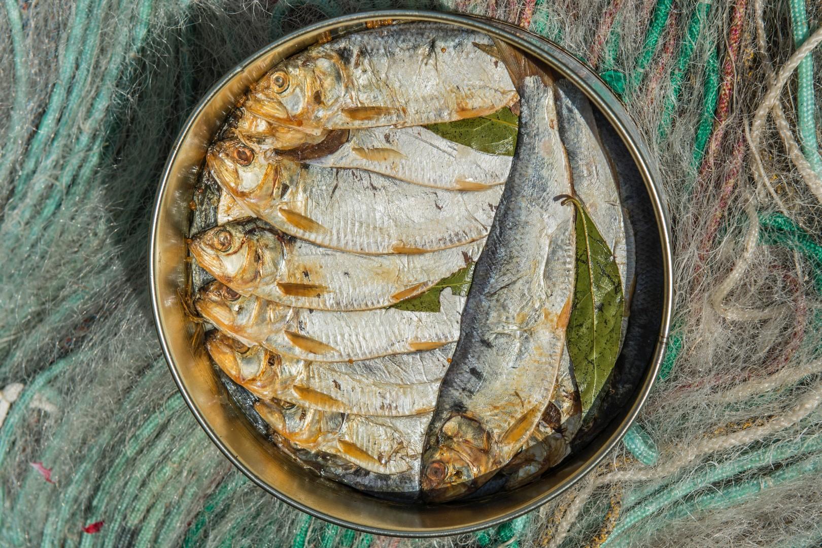 pesca agoni dervio 1.jpg